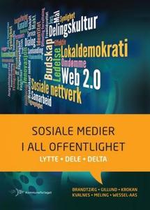 Sosiale medier i all offentlighet (ebok) av P