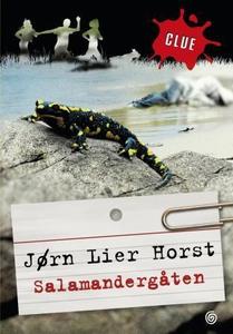 Salamandergåten (ebok) av Jørn Lier Horst