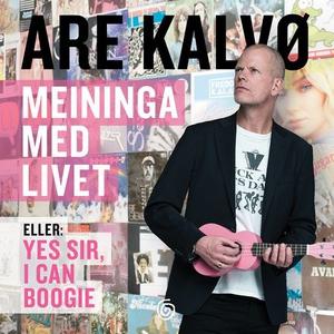 Meininga med livet (lydbok) av Are Kalvø
