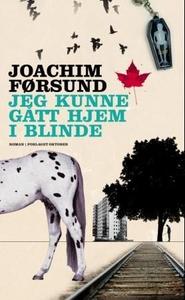 Jeg kunne gått hjem i blinde (ebok) av Joachi