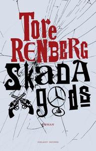 Skada gods (ebok) av Tore Renberg