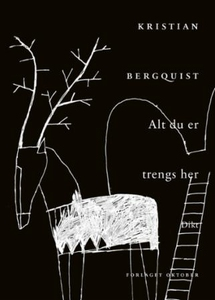 Alt du er trengs her (ebok) av Kristian Bergq