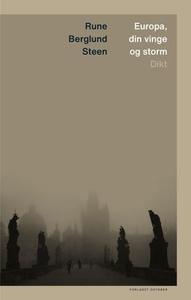 Europa, din vinge og storm (ebok) av Rune Ber