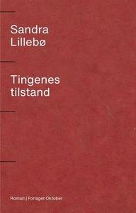Tingenes tilstand (ebok) av Sandra Lillebø