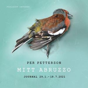 Mitt Abruzzo (lydbok) av Per Petterson