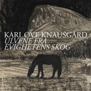 Ulvene fra evighetens skog (lydbok) av Karl O
