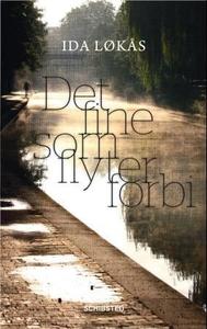 Det fine som flyter forbi (ebok) av Ida Løkås