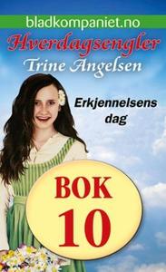 Erkjennelsens dag (ebok) av Trine Angelsen