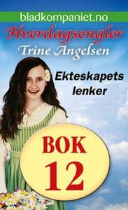 Ekteskapets lenker (ebok) av Trine Angelsen