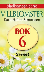 Savnet (ebok) av Kate Helen Simonsen