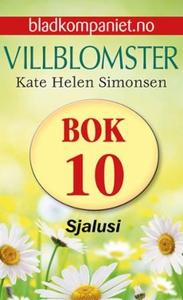 Sjalusi (ebok) av Kate Helen Simonsen