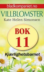Kjærlighetsbarnet (ebok) av Kate Helen Simons