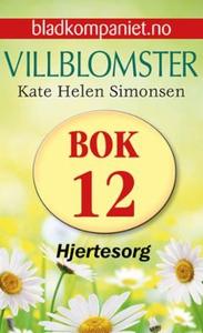 Hjertesorg (ebok) av Kate Helen Simonsen
