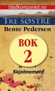 Skjebnemøte (ebok) av Bente Pedersen