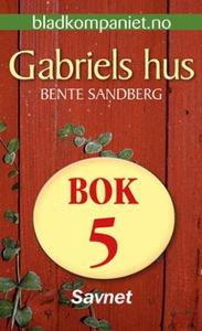 Savnet (ebok) av Bente Sandberg