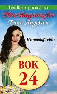 Hemmeligheten (ebok) av Trine Angelsen