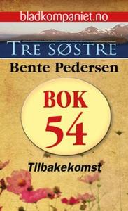 Tilbakekomst (ebok) av Bente Pedersen