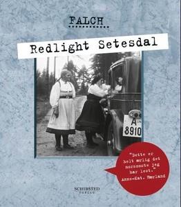 Redlight Setesdal (ebok) av Sigmund Falch