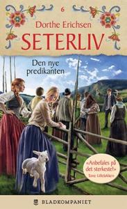 Den nye predikanten (ebok) av Dorthe Erichsen