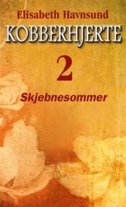 Skjebnesommer (ebok) av Elisabeth Havnsund