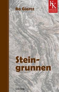 Steingrunnen (ebok) av Bo Giertz