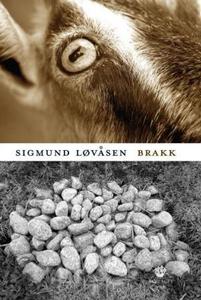 Brakk (ebok) av Sigmund Løvåsen