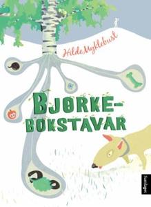 Bjørkebokstavar (ebok) av Hilde Myklebust