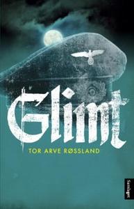 Glimt (ebok) av Tor Arve Røssland