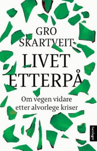 Livet etterpå (ebok) av Gro Skartveit