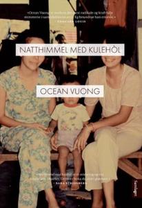 Natthimmel med kulehòl (ebok) av Ocean Vuong