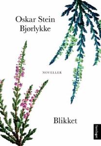 Blikket (ebok) av Oskar Stein Bjørlykke