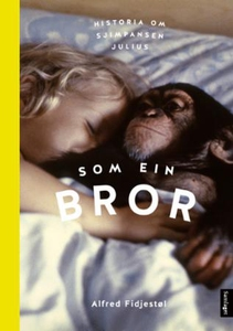 Som ein bror (ebok) av Alfred Fidjestøl