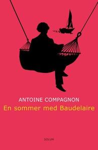 En sommer med Baudelaire (ebok) av Antoine Co