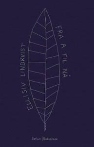 Fra a til nå (ebok) av Ellisiv Lindkvist