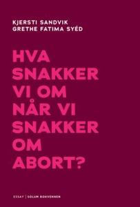 Hva snakker vi om når vi snakker om abort? (e