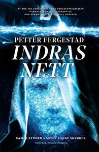 Indras nett (ebok) av Petter Fergestad
