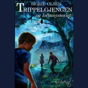 Trippelgjengen og loftsmysteriet (lydbok) av
