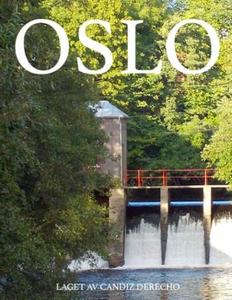 Oslo (ebok) av Candiz Derecho