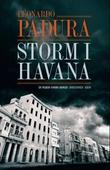 Storm i Havana