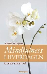 Mindfulness i hverdagen (ebok) av Rebekka Th.