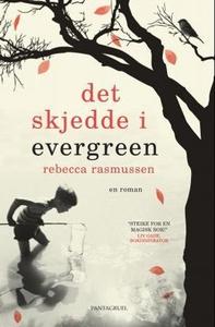 Det skjedde i Evergreen (ebok) av Rebecca Ras