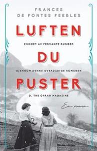 Luften du puster (ebok) av Frances de Pontes