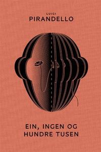 Ein, ingen og hundre tusen (ebok) av Luigi Pi