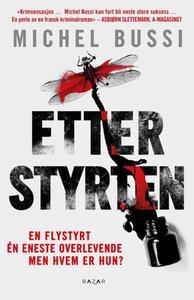 Etter styrten (ebok) av Michel Bussi