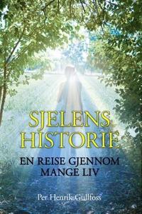Sjelens historie (ebok) av Per Henrik Gullfos