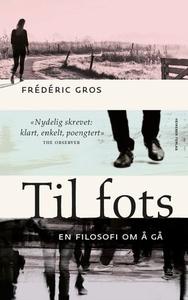 Til fots (ebok) av Frédéric Gros