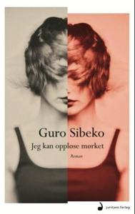 Jeg kan oppløse mørket (ebok) av Guro Sibeko