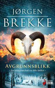 Avgrunnsblikk (ebok) av Jørgen Brekke