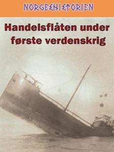 Handelsflåten under første verdenskrig (ebok)