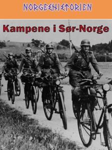 Kampene i Sør-Norge (ebok) av Per Erik Olsen